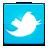 social_twitter_bird